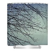 First Of Winter Shower Curtain
