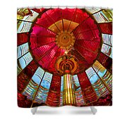 First Order Fresnel Lens Shower Curtain