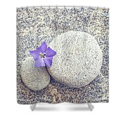 First Periwinkle  Shower Curtain