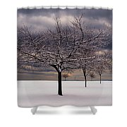 First Snow 2010 Shower Curtain