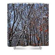 First Snow 4 Shower Curtain