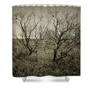 First Snow Shower Curtain by Amy Weiss
