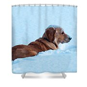 First Snow Bliss Shower Curtain