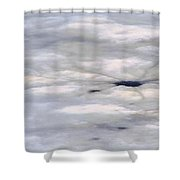 First Thaw Shower Curtain