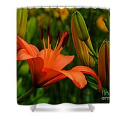 First To Bloom Shower Curtain