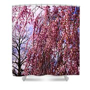 First To Flower Shower Curtain