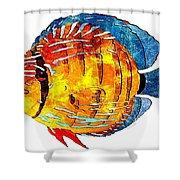 Fish 502-11-13 Marucii Shower Curtain