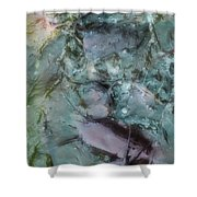 Fish Abstract Shower Curtain