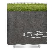 Fish And Arrow On Pavement Shower Curtain