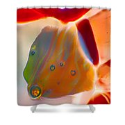 Fish Blowing Bubbles Shower Curtain