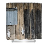 Fish Drying Outside Rustic Fisherman House Shower Curtain