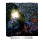 Fish Encounter Shower Curtain