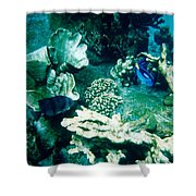 Fish In The Coral Shower Curtain