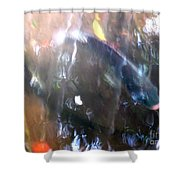 Fish In The Water Shower Curtain