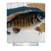 Fish Mount Set 10 Cc Shower Curtain