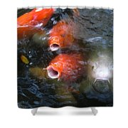 Fish Mouths 2 Shower Curtain