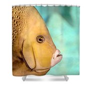 Fish Profile Shower Curtain