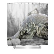 Fish Sculpture Shower Curtain