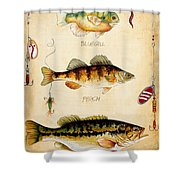 Fish Trio-c Shower Curtain