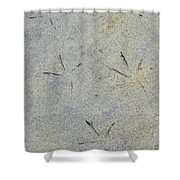 Fishermans Foot Prints Shower Curtain