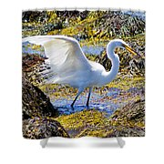 Fishing The Tide Shower Curtain