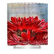 Fitting In By Diana Sainz Shower Curtain