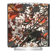 Five Petals - Spring Blossoms Shower Curtain