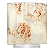 Five Studies For The Figure Of Haman Shower Curtain