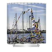 Flags Of The World 2 Shower Curtain