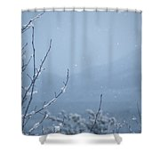 Flakes Shower Curtain