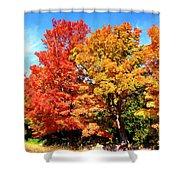 Flamboyant Autumn Shower Curtain