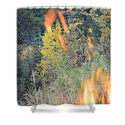 Flame Colored Fall.  Shower Curtain