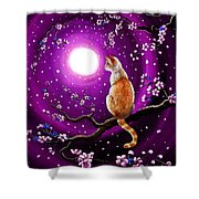 Flame Point Siamese Cat In Dancing Cherry Blossoms Shower Curtain