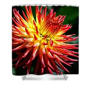 Flame Tips Shower Curtain