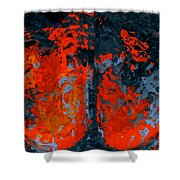 Flames And Grey Shower Curtain