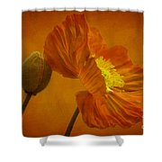 Flaming Beauty Shower Curtain by Heiko Koehrer-Wagner