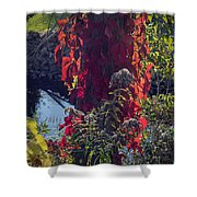 Flaming Beauty Shower Curtain