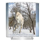 Flaming Enthusiasm Shower Curtain