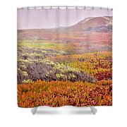 Flaming Ice Shower Curtain