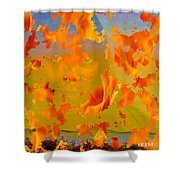 Flaming Indian Girl Sunset Shower Curtain