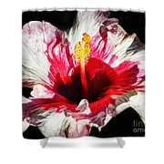 Flaming Petals Shower Curtain