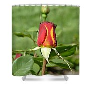 Flaming Rose Shower Curtain