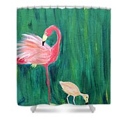 Flamingo And Chick Shower Curtain