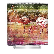 Flamingo Art Shower Curtain