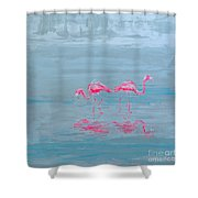 Flamingo Couple In Shallow Waters Shower Curtain