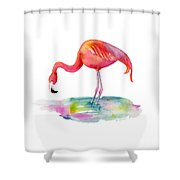 Flamingo Dip Shower Curtain