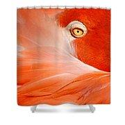 Flamingo Eye Shower Curtain