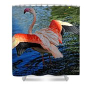 Flamingo Flight Shower Curtain