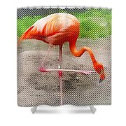 Flamingo Four Shower Curtain