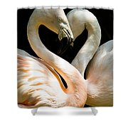 Flamingo Heart Shower Curtain